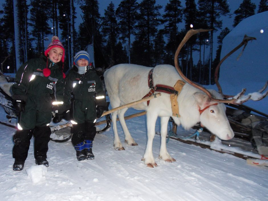 A boy and girl stand next to a white reindeer in the snow in Lapland